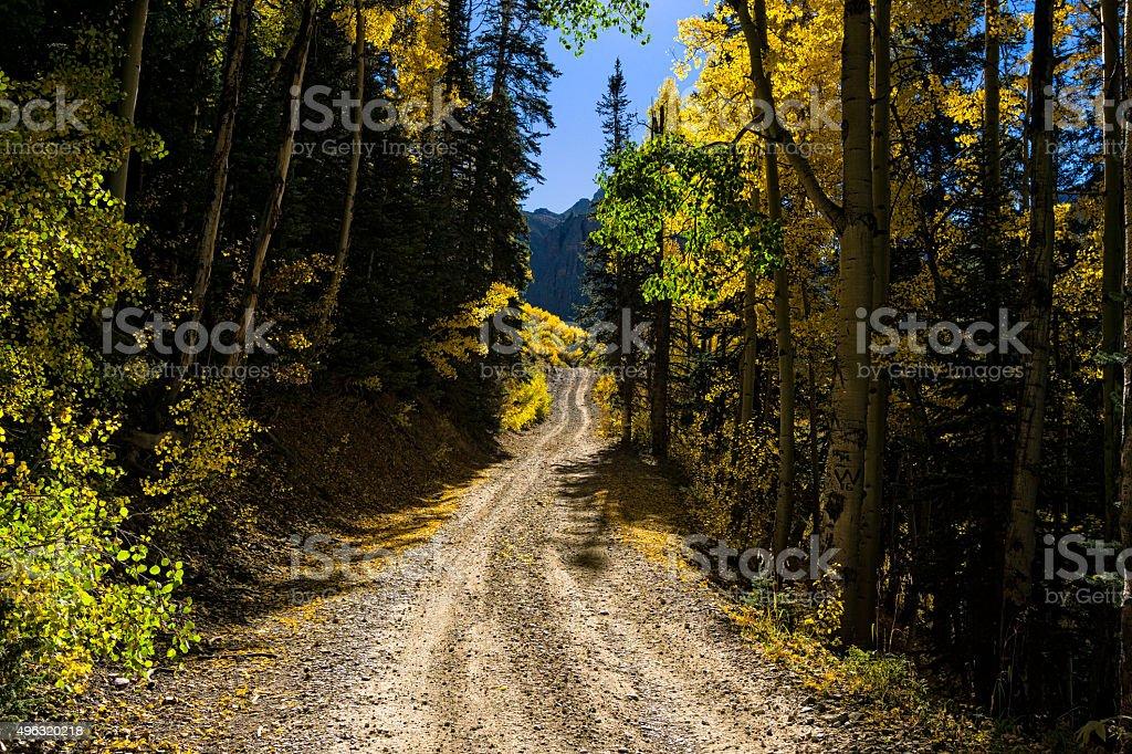 Dirt Road Fall Colors stock photo