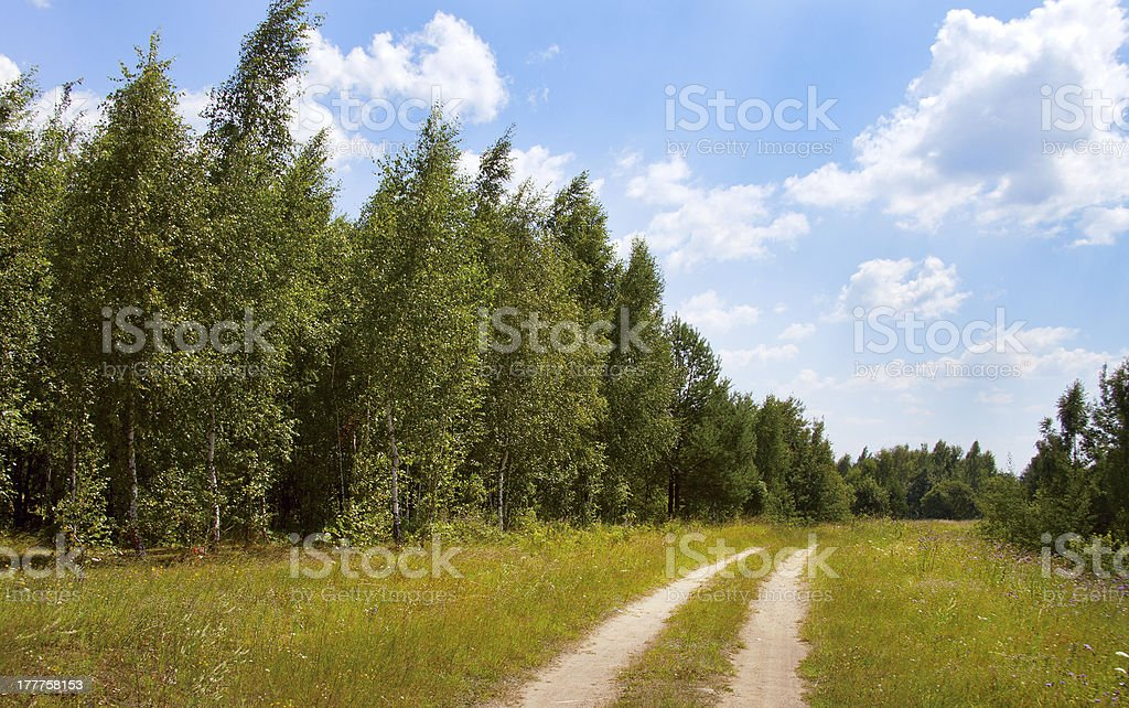 dirt road in a field royalty-free stock photo