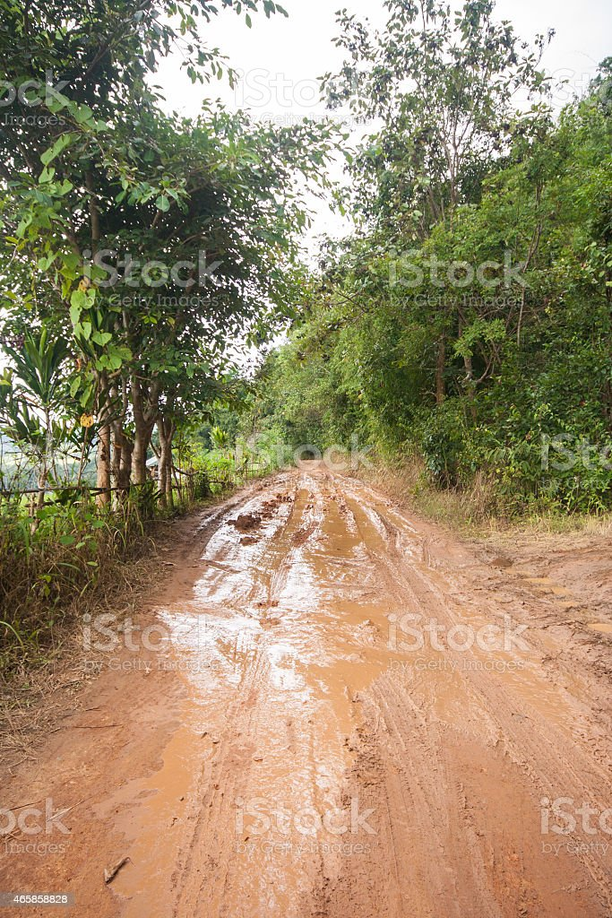 Dirt road in a rural area. stock photo