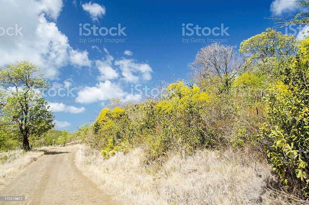 dirt road in idyllic landscape royalty-free stock photo