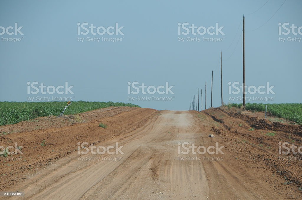 Dirt Road in the Cotton Field stock photo