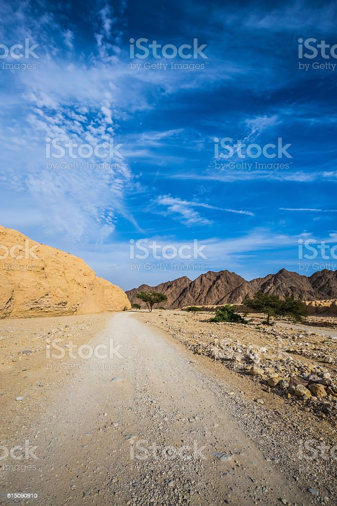Dirt road in the desert near Red Sea stock photo
