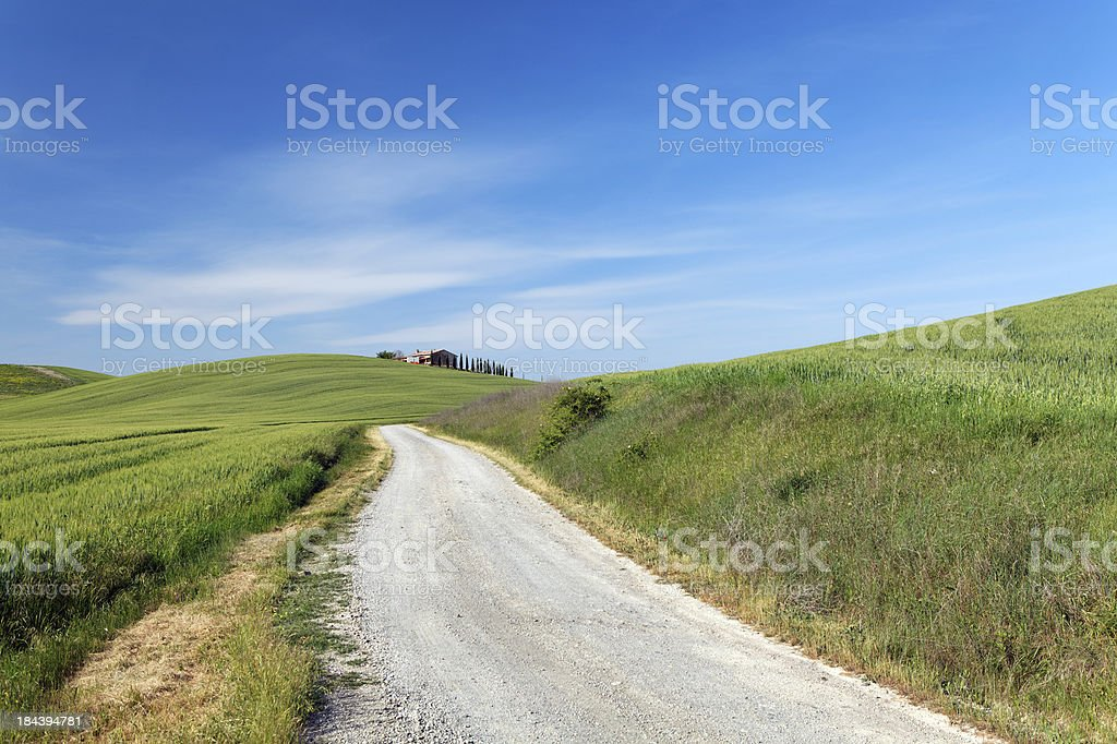dirt road in Tuscany royalty-free stock photo