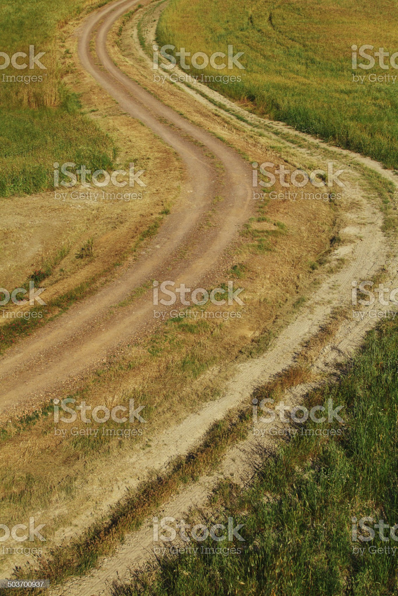 Dirt road in Val d'Orcia, Italy. royalty-free stock photo