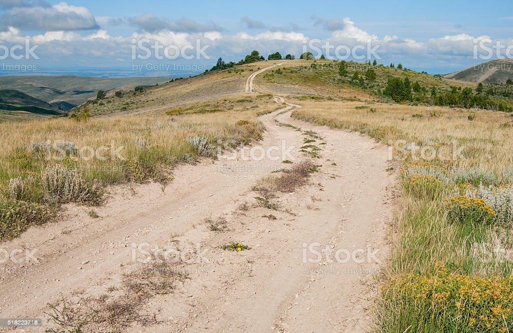 Dirt Road in Wyoming stock photo