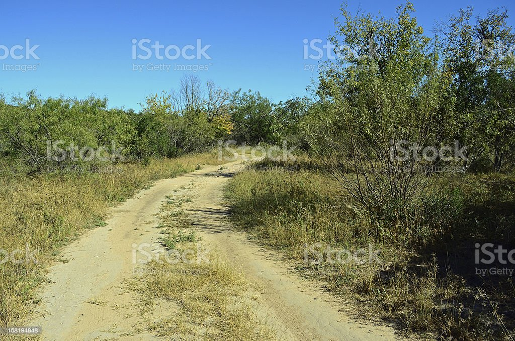 Dirt Road on Desert Ranch stock photo