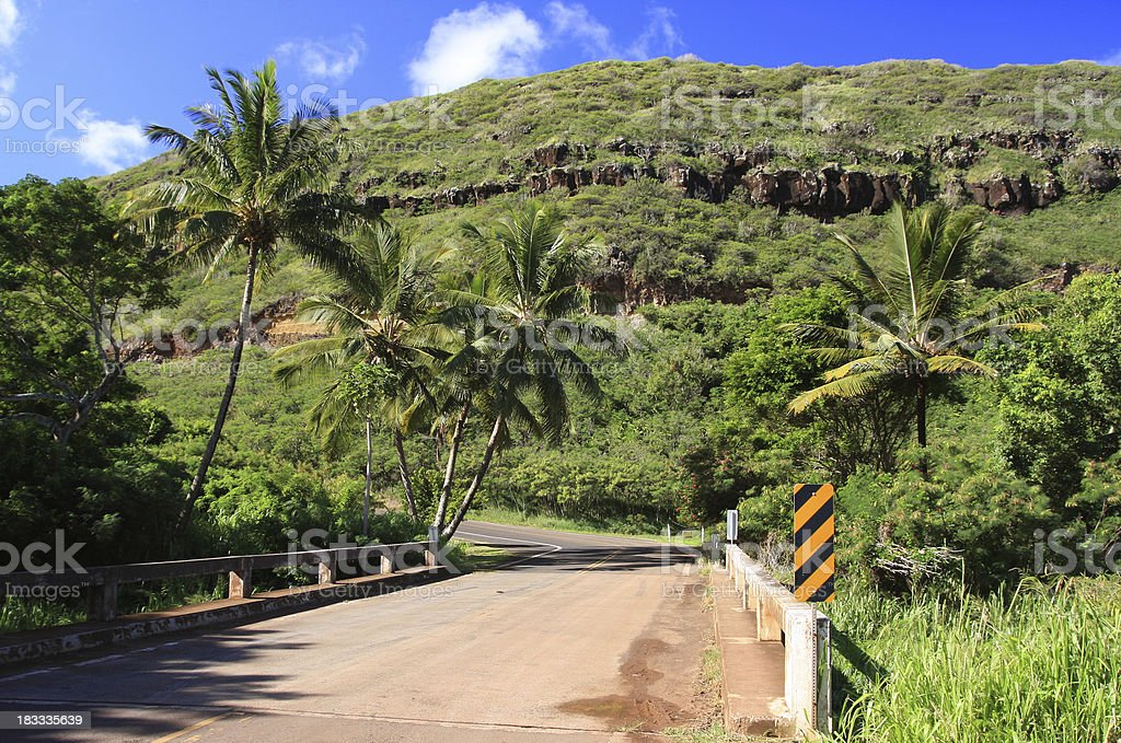 Dirt road on Maui Hawaii stock photo