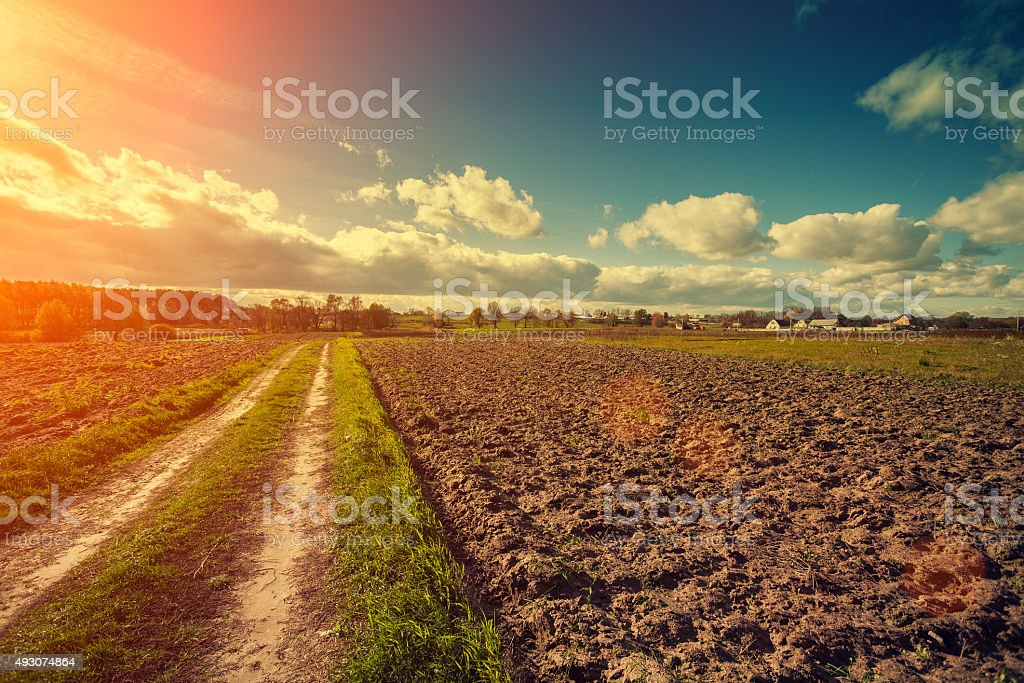 Dirt road on the plowed field at sunset stock photo