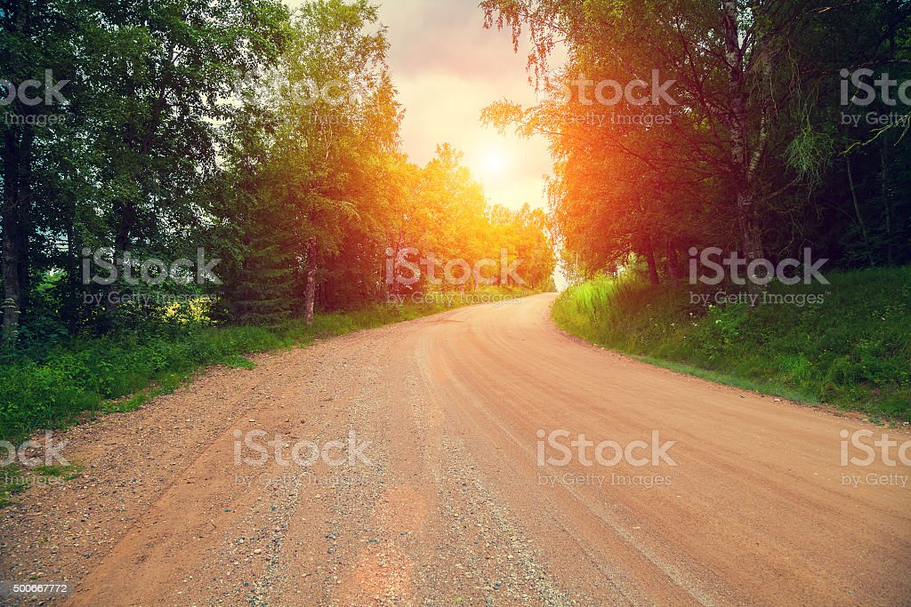 Dirt road through the forest at dawn stock photo