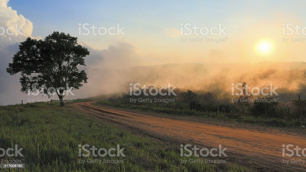 Dirt road track stock photo
