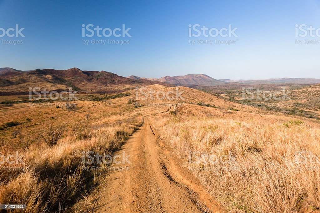 Dirt Road Trail Wilderness stock photo