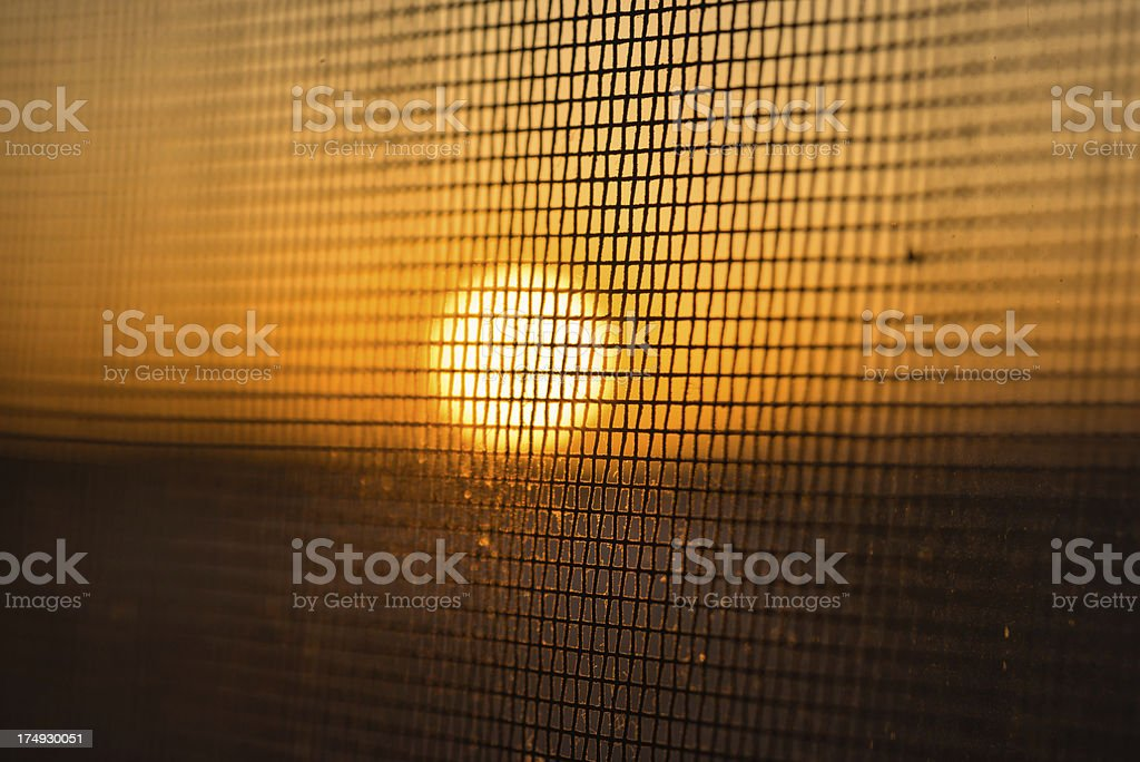 Dirty Barbed wire Sunlight Silhouette, royalty-free stock photo