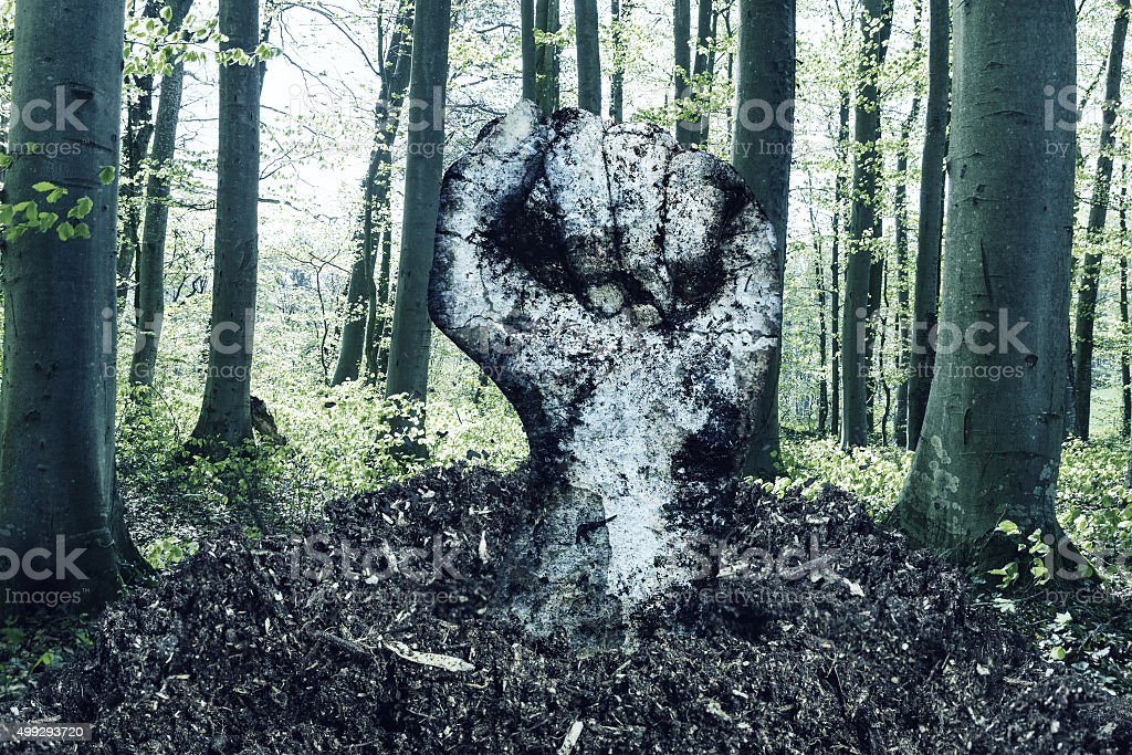 dirty fist raising up over the soil stock photo