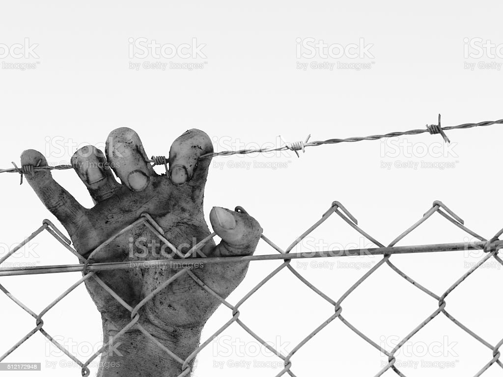 Dirty  hand clinging to a steel barb wire fence stock photo