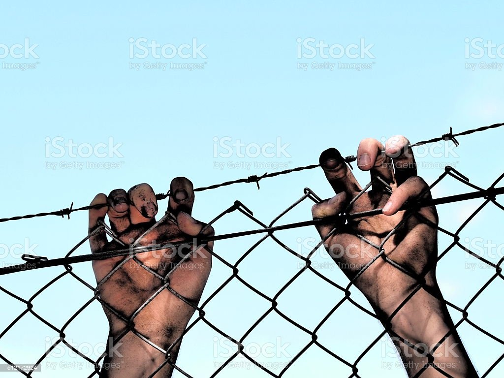 Dirty hands clinging to a steel barb wire fence stock photo