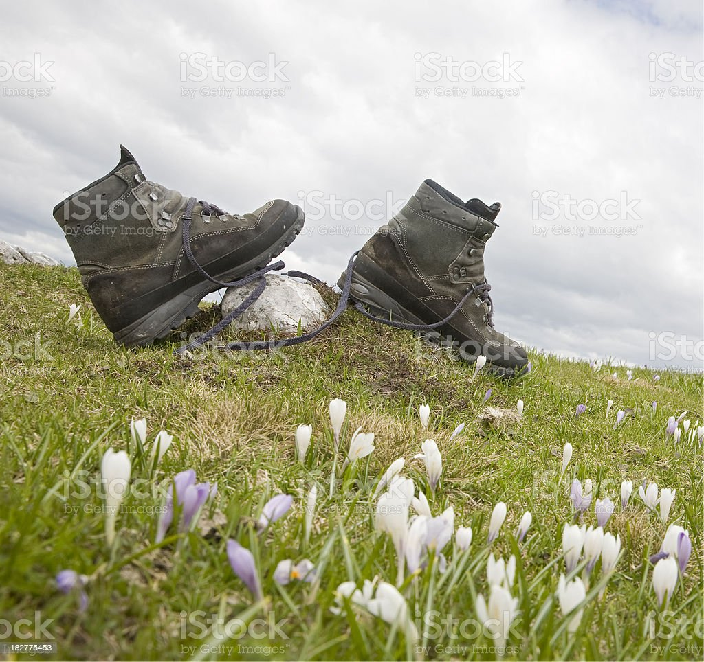 dirty hiking boots royalty-free stock photo