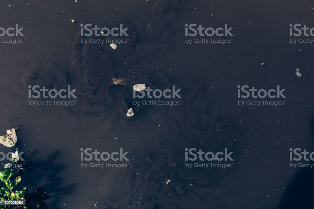 Dirty oil stains on the surface of the lake water polluted as a result of run-off of waste industrial water. Ecological problem. stock photo
