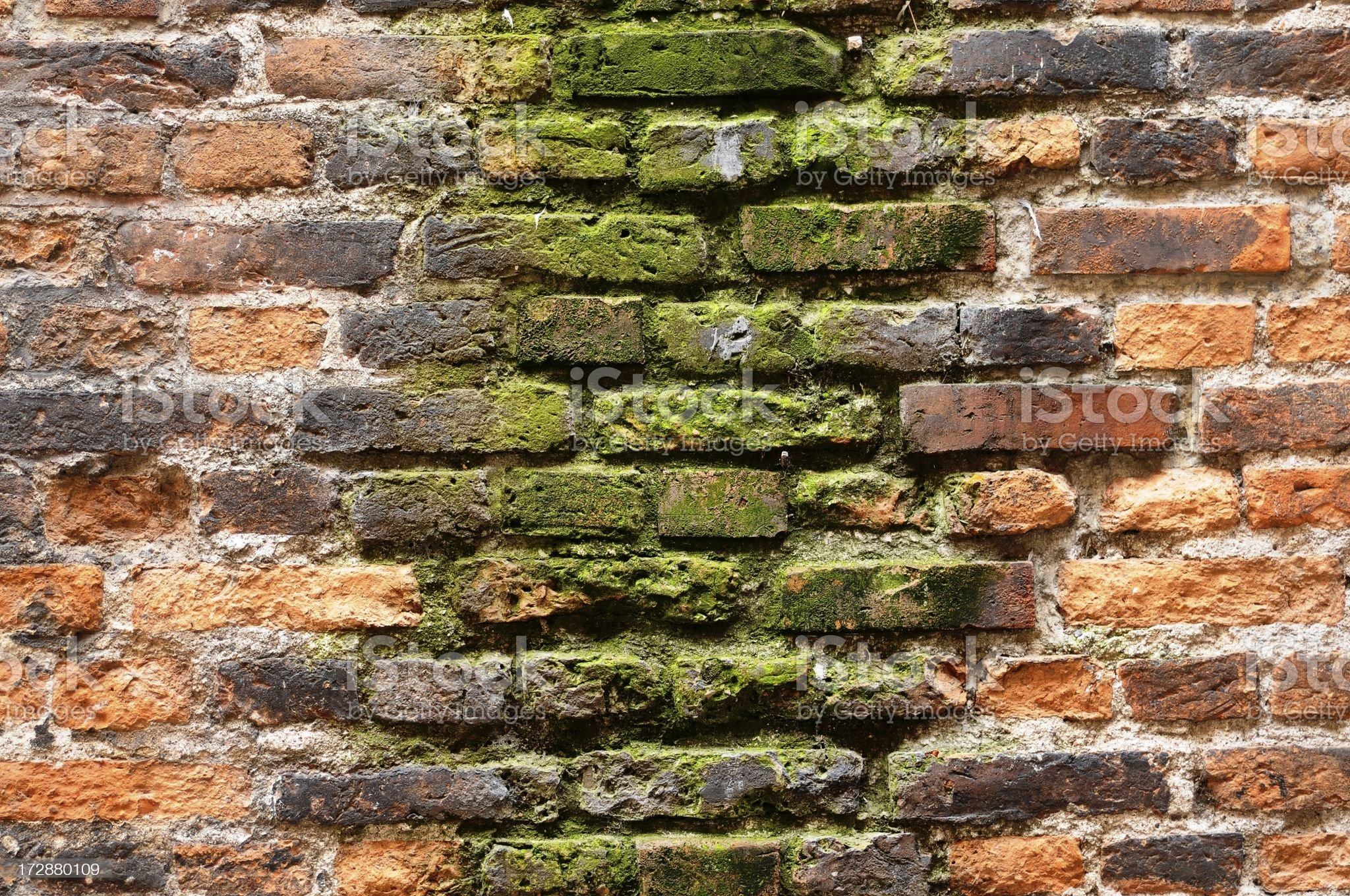 dirty old wall royalty-free stock photo