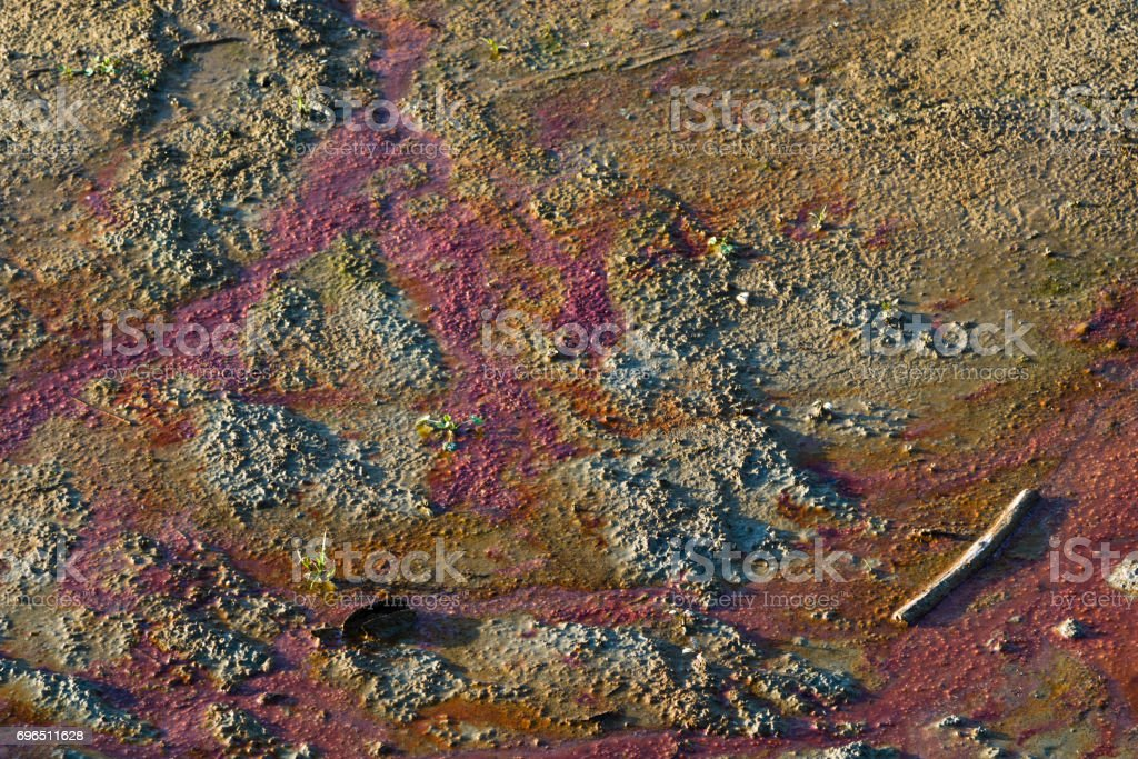 dirty polluted water stock photo