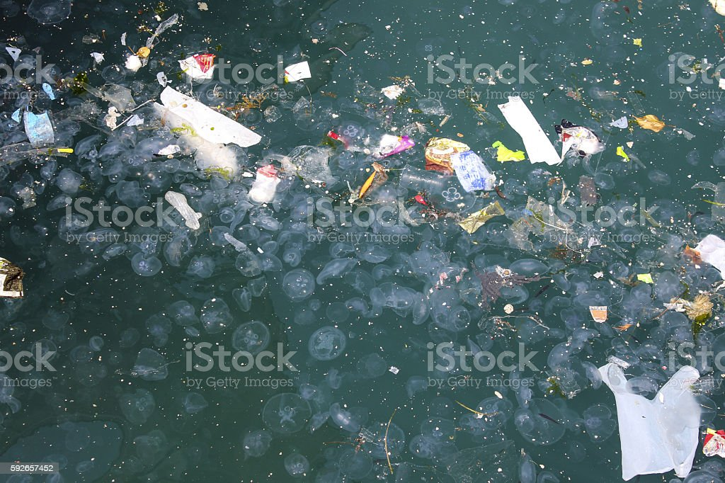dirty sea with trash stock photo