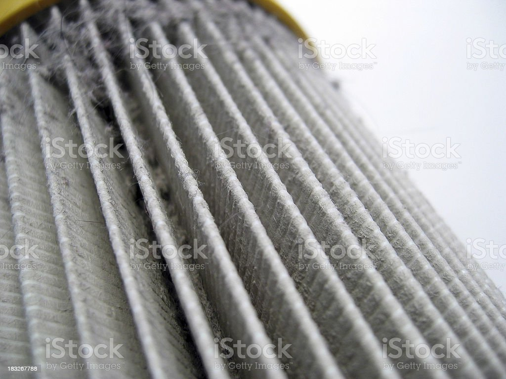 Dirty Vacuum Cleaner Filter 2 royalty-free stock photo
