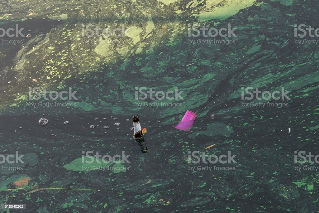 Dirty Water of beer bottle and plastic cup stock photo