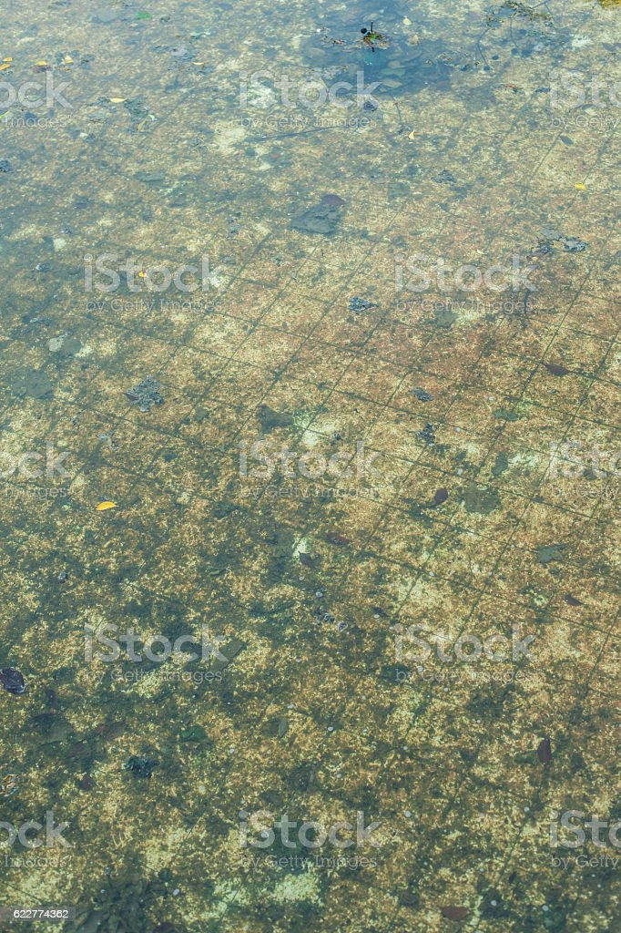 dirty water swimming pool background stock photo