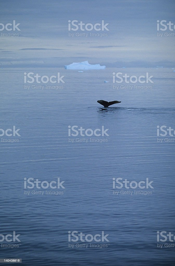 Disappearance stock photo