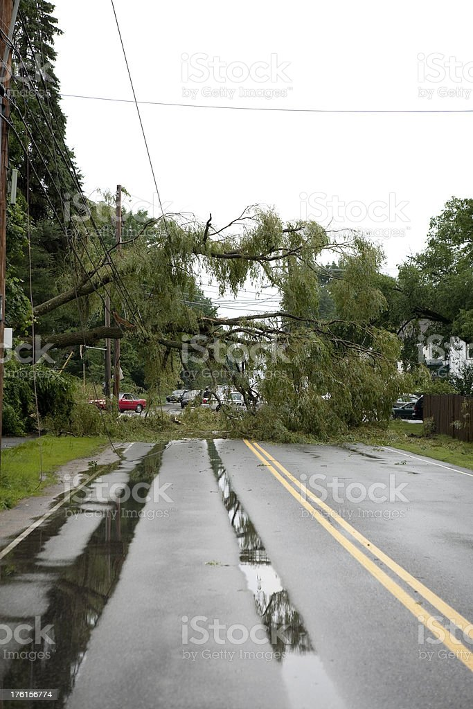 Disaster aftermath from severe weather, wind and thunder storm royalty-free stock photo