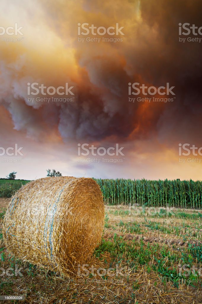 Disaster over the fields royalty-free stock photo