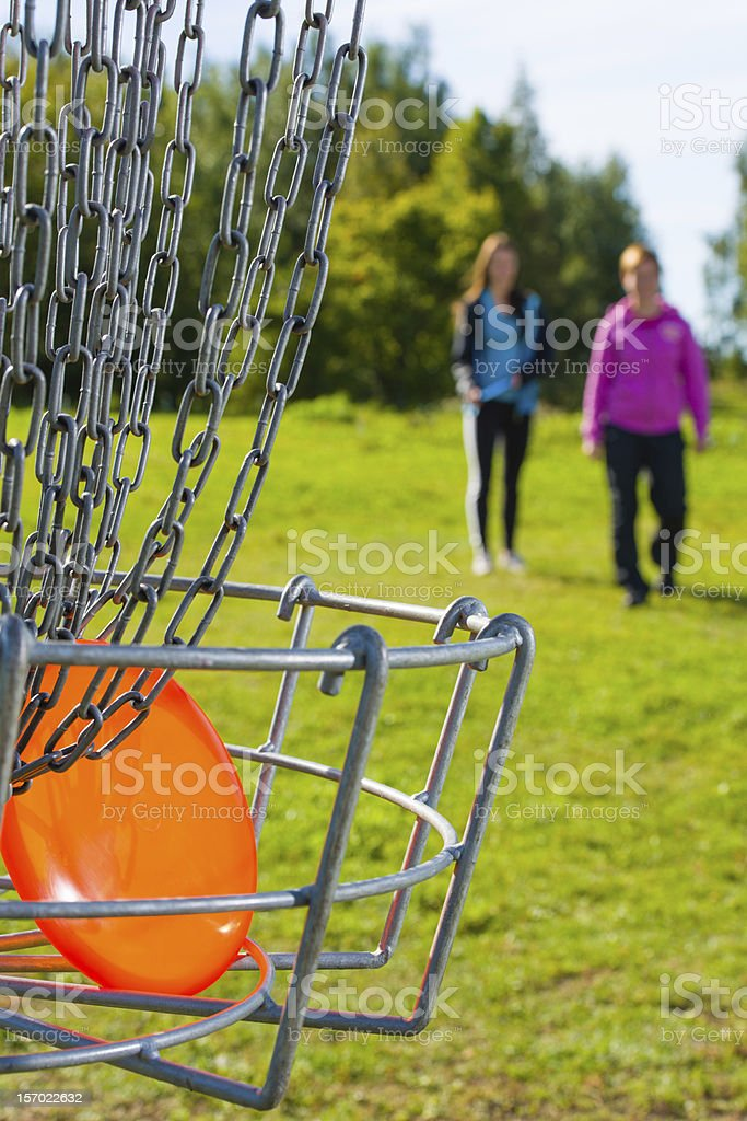 Disc in basket stock photo