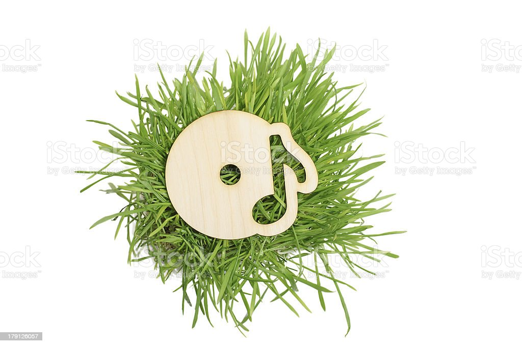CD disc wooden icon and grass royalty-free stock photo