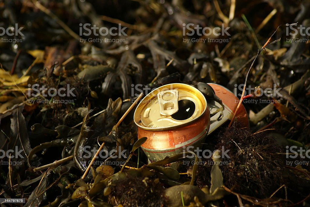 Discarded Drink can royalty-free stock photo