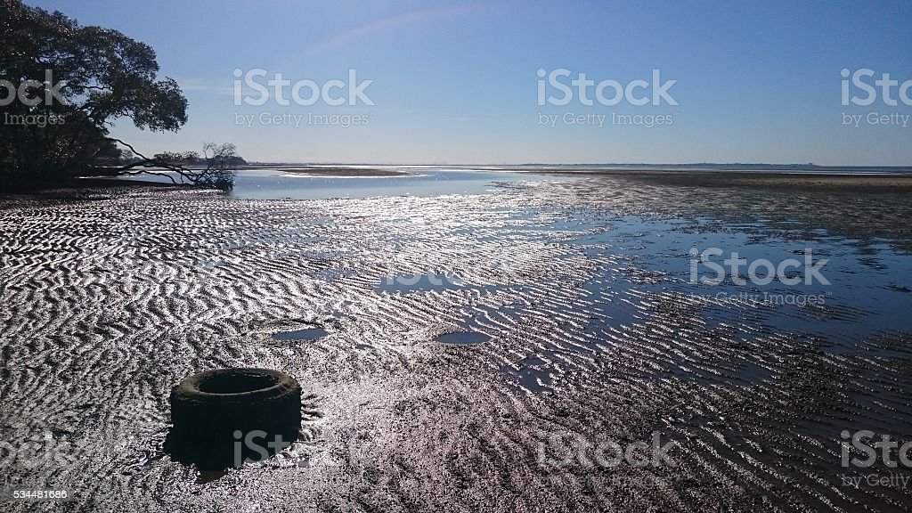 Discarded tyre in swamp stock photo