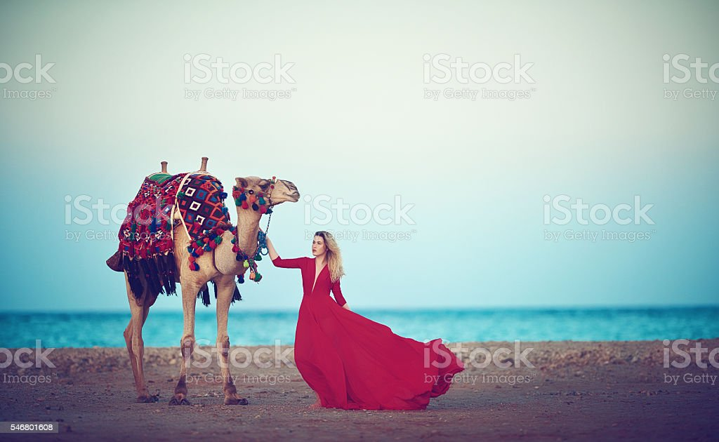discover the arabian culture stock photo