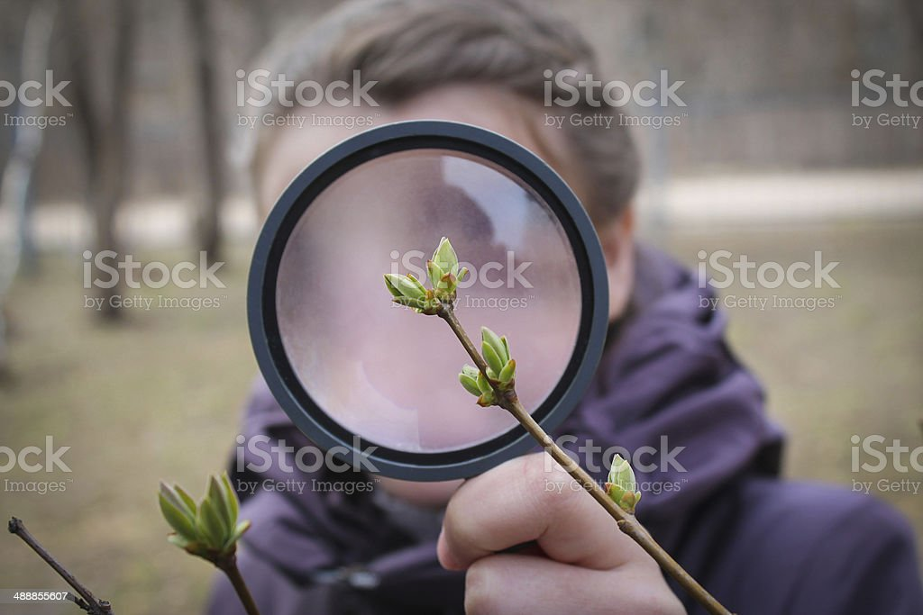 Discovering Nature stock photo