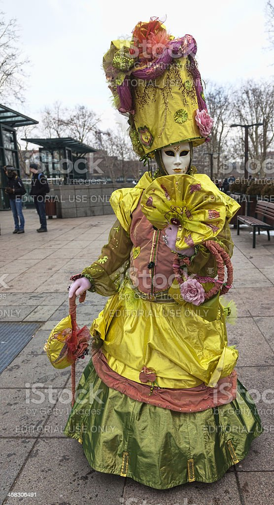Disguised Person royalty-free stock photo