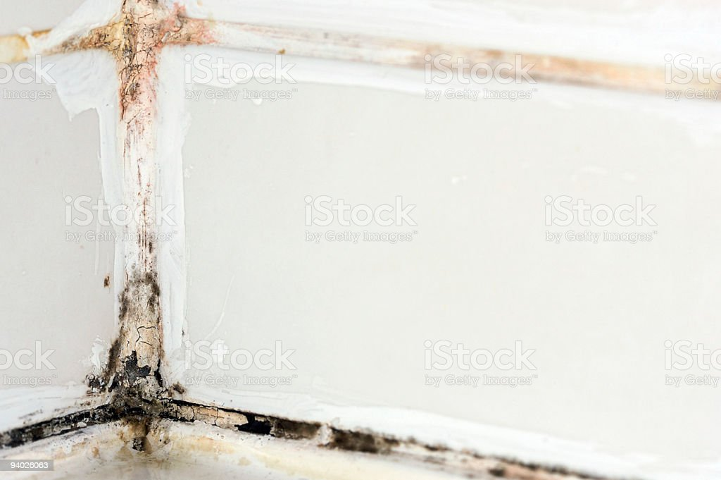 Disgusting hotel shower bathroom tile sealant with mould and mildew royalty-free stock photo