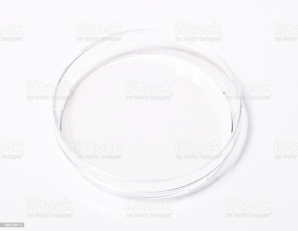 Dish, petri isolated on white stock photo