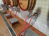 dispenser bulk wine