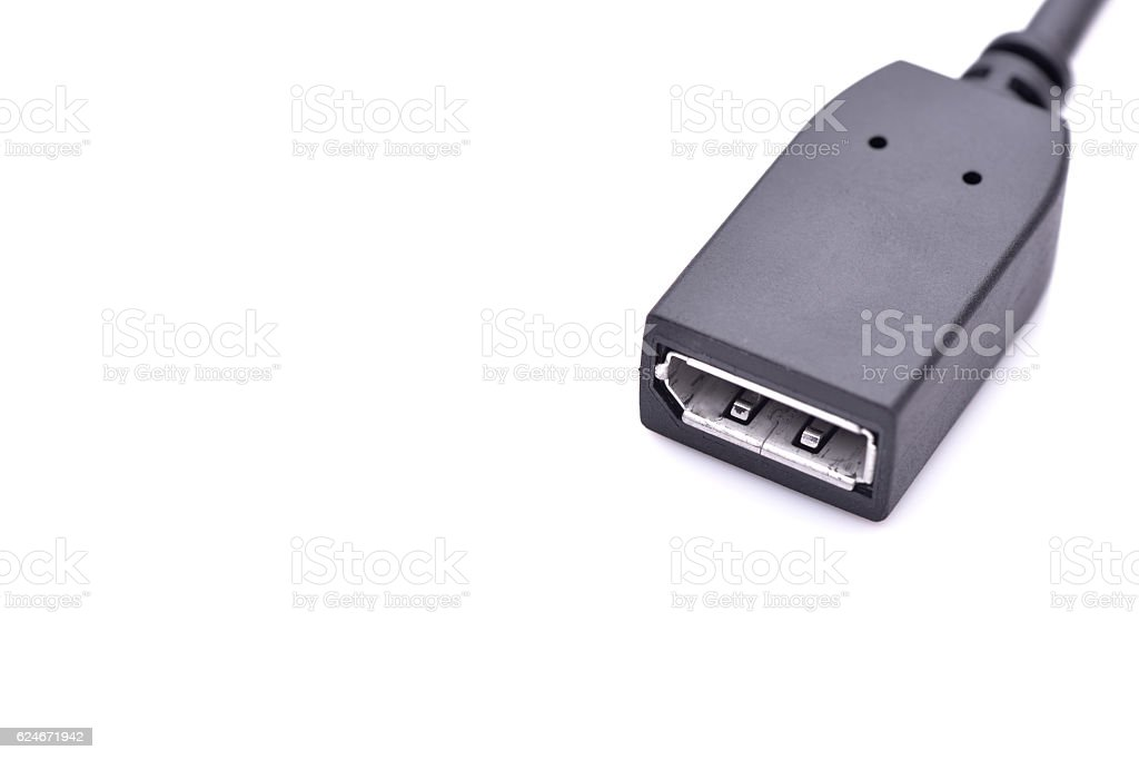 Display port connector isolated on white background stock photo