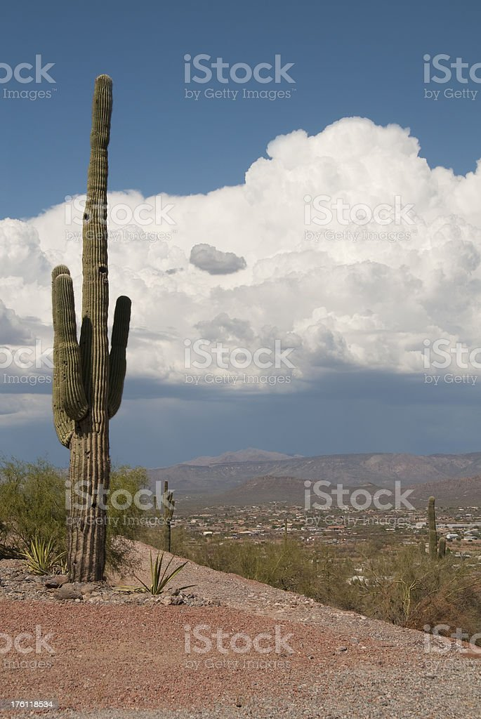 Distant Desert Storm royalty-free stock photo