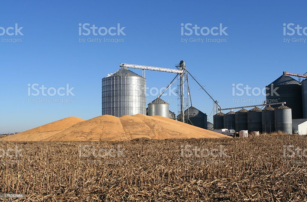 Distant shot of grain elevator and piles of grain  royalty-free stock photo