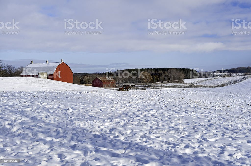 Distant view of red barns in the snow stock photo