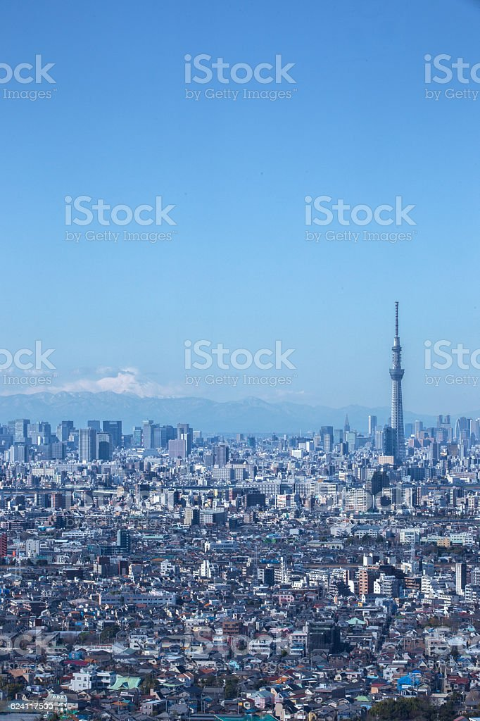 Distant view of Tokyo in Japan stock photo