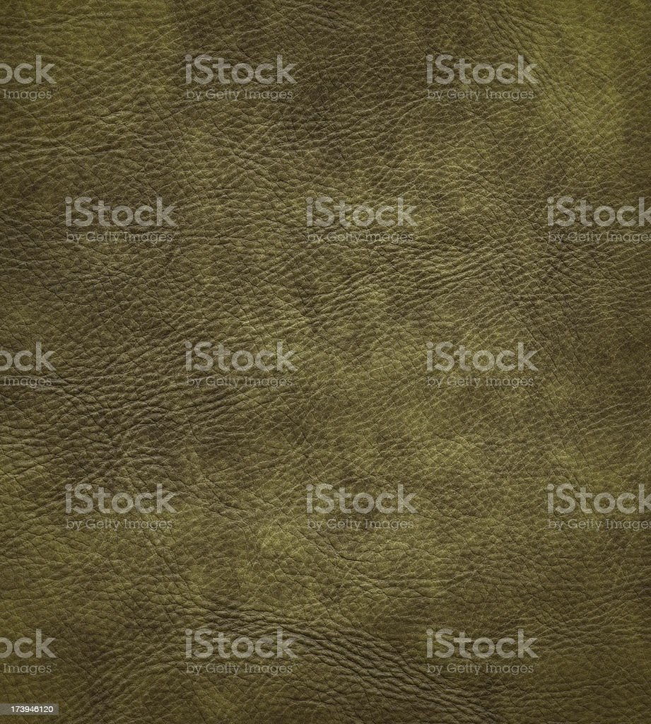 distressed green leather royalty-free stock photo