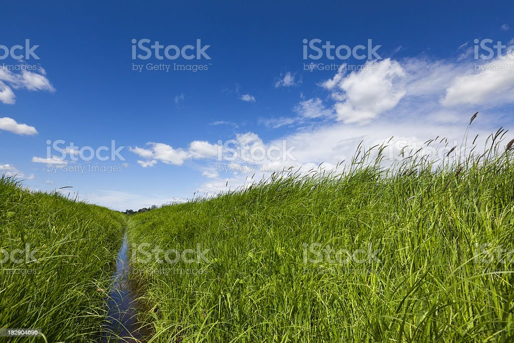 Ditch in an Green Field with Blue Sky stock photo