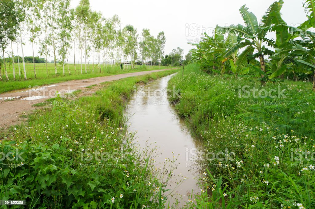 Ditch in the countryside. stock photo