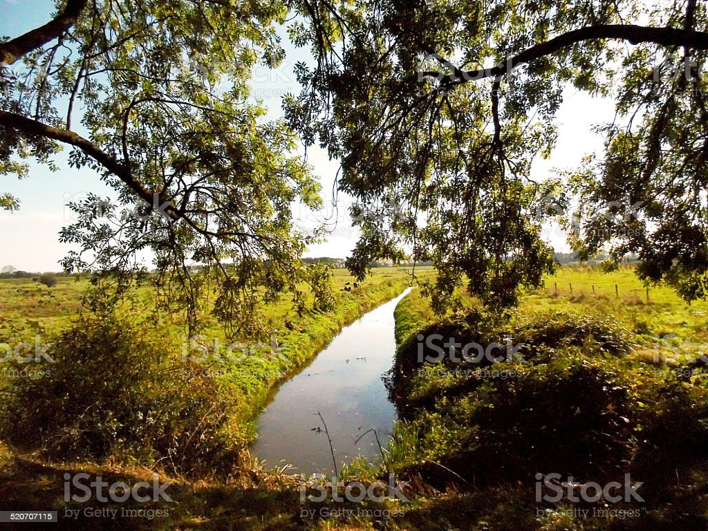 ditch in the netherlands stock photo
