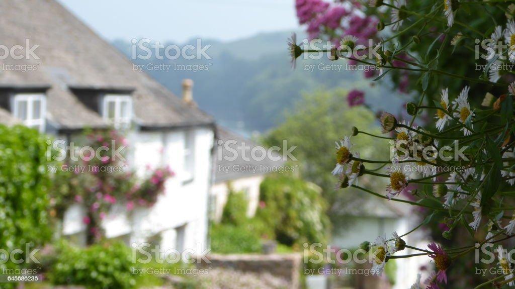 Dittisham Summer Flowers stock photo